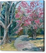 Trees Of Windermere Acrylic Print by Susan E Jones