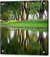 Trees Reflection On The Lake Acrylic Print by Heiko Koehrer-Wagner