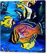 Tropical Fish Acrylic Print by Karon Melillo DeVega