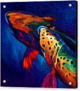 Trout Dreams Acrylic Print by Savlen Art
