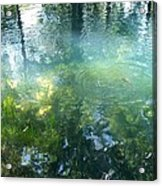Trout Pond Acrylic Print by Mary Wolf