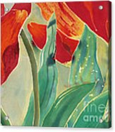 Tulips And Pushkinia Upper Detail Acrylic Print by Anna Lisa Yoder