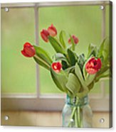 Tulips In Mason Jar Acrylic Print by Kay Pickens