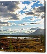 Tundra Burst Acrylic Print by Chad Dutson