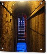 Tunnel Exit Acrylic Print by Carlos Caetano