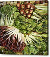 Turnip And Chard Concerto Acrylic Print by Jen Norton