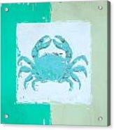 Turquoise Seashells Xv Acrylic Print by Lourry Legarde