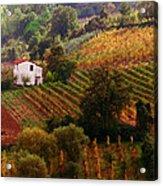 Tuscan Autumn Acrylic Print by John Galbo