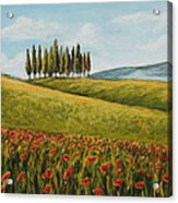 Tuscan Field With Poppies Acrylic Print by Melinda Saminski
