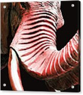 Tusk 4 - Red Elephant Art Acrylic Print by Sharon Cummings