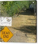 Tv Movie Homage Killer Bees 1974 B's Crossing Black Canyon City Arizona 2004 Acrylic Print by David Lee Guss