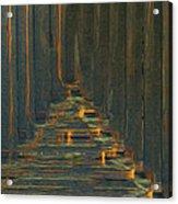 Under The Boardwalk Acrylic Print by Jack Zulli