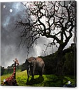 Under The Old Oak Tree - 5d21097 - Vertical Acrylic Print by Wingsdomain Art and Photography