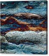 Untamed Sea 2 Acrylic Print by Carol Cavalaris