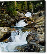 Up The Creek Acrylic Print by Bill Gallagher