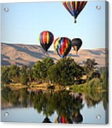 Up Up And Away Acrylic Print by Carol Groenen