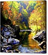Upstream Acrylic Print by Karen Wiles