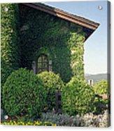 V Sattui Winery Vintage View Acrylic Print by Michelle Wiarda