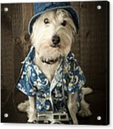 Vacation Dog Acrylic Print by Edward Fielding