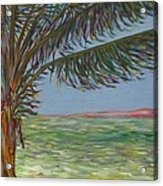 Veiled Horizon Acrylic Print by Karen Doyle