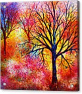 Vibrant Acrylic Print by Ann Marie Bone