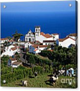 Village In Azores Islands Acrylic Print by Gaspar Avila