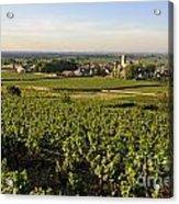 Vineyard And Village Of Pommard. Cote D'or. Route Des Grands Crus. Burgundy.france. Europe Acrylic Print by Bernard Jaubert