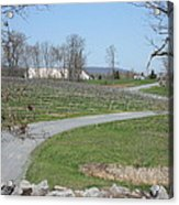 Vineyards In Va - 12122 Acrylic Print by DC Photographer