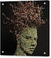 Vino Acrylic Print by Adam Long