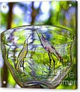 Vinsanchi Glass Art-4 Acrylic Print by Vin Kitayama