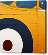 Vintage Airplane Abstract Design Acrylic Print by Carol Leigh