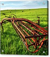 Vintage Farm Equipment II - Blue Ridge Acrylic Print by Dan Carmichael