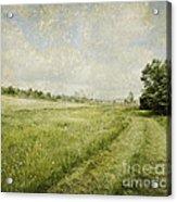 Vintage Landscape Acrylic Print by Jelena Jovanovic