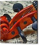 Violin Scroll Up Close Acrylic Print by Paul Ward
