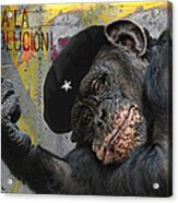 Viva La Evolucion Acrylic Print by Joachim G Pinkawa