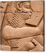 Wadjet Acrylic Print by Stephen & Donna O'Meara