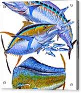 Wahoo Tuna Dolphin Acrylic Print by Carey Chen