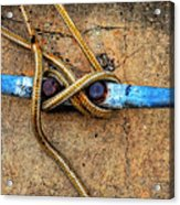 Waiting - Boat Tie Cleat By Sharon Cummings Acrylic Print by Sharon Cummings