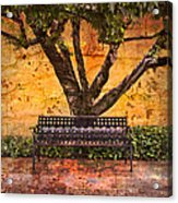 Waiting For You Acrylic Print by Debra and Dave Vanderlaan