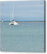 Waiting In Provincetown Acrylic Print by Michelle Wiarda