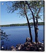 Walden Pond Saugus Ma Acrylic Print by Barbara McDevitt