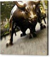 Wall Street Bull Acrylic Print by Tony Cordoza