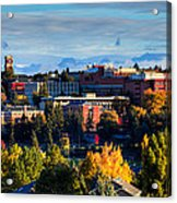 Washington State University In Autumn Acrylic Print by David Patterson