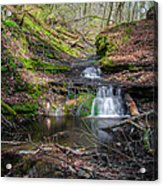 Waterfall At Parfrey's Glen Acrylic Print by Jonah  Anderson