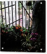 Waterfall Color Acrylic Print by Warren Thompson