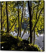 Waters Edge Acrylic Print by Bob Orsillo