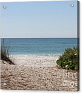 Welcome To The Beach Acrylic Print by Carol Groenen