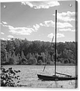 Wellesley College Waban Lake Acrylic Print by University Icons