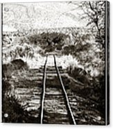 Western Tracks Acrylic Print by John Rizzuto