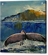 Whale Song Acrylic Print by Michael Creese